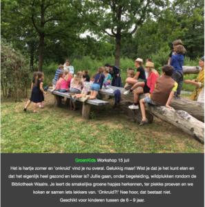 wildpluk workshop